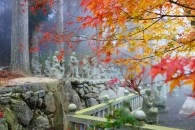 Shikoku 88 Temple Pilgrimage-356