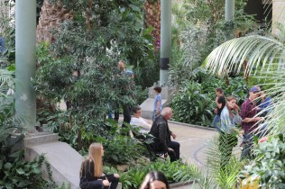 There was this strange indoor rainforest in the middle of the museum.