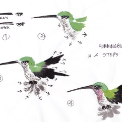 Hummingbird Diagram Of Color 48 Volt Battery Wiring It S In The Cards Hummingbirds Rule Followmybrushmarks Anna4steps