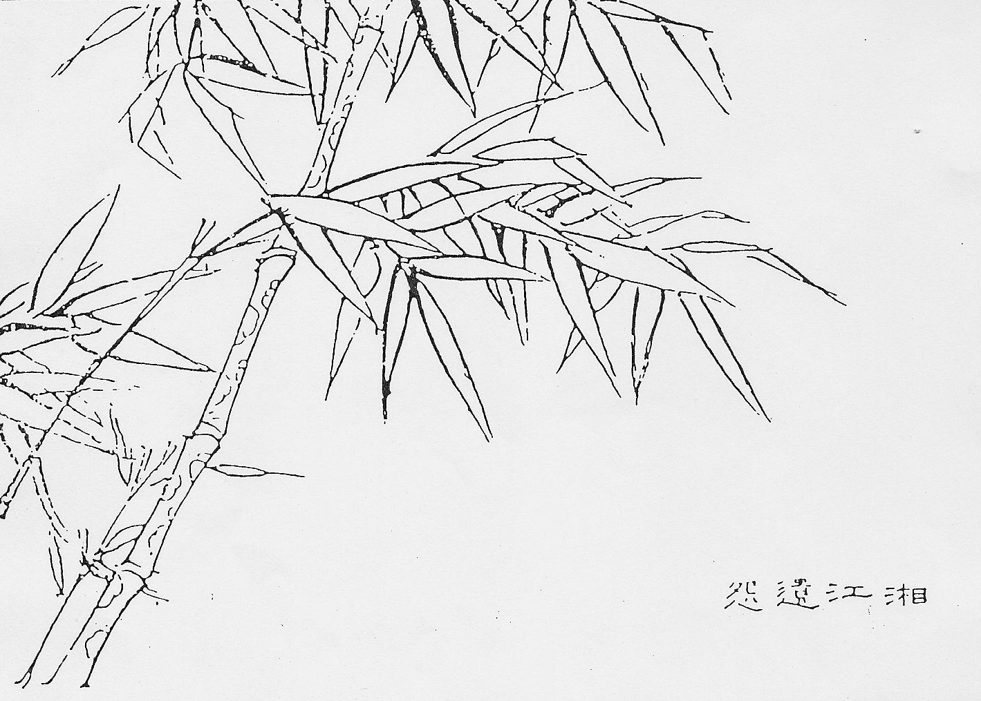 Most Ancient Bamboo style (outline/contour