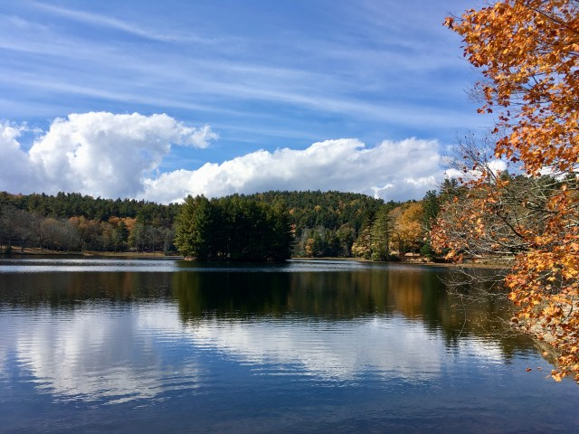 Take a hike around Bass Lake when exploring Moses H Cone Memorial Park