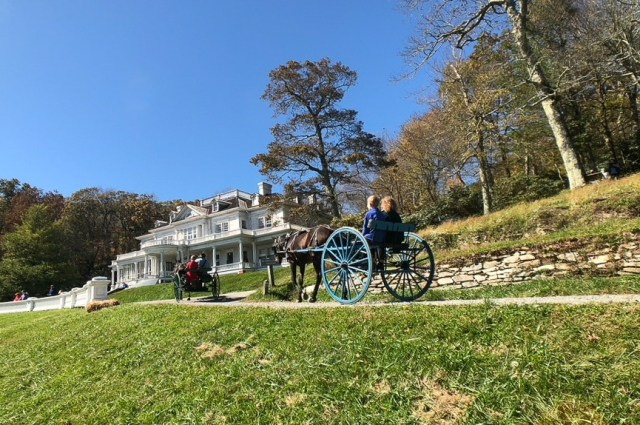 Exploring Moses H Cone by horse carriage