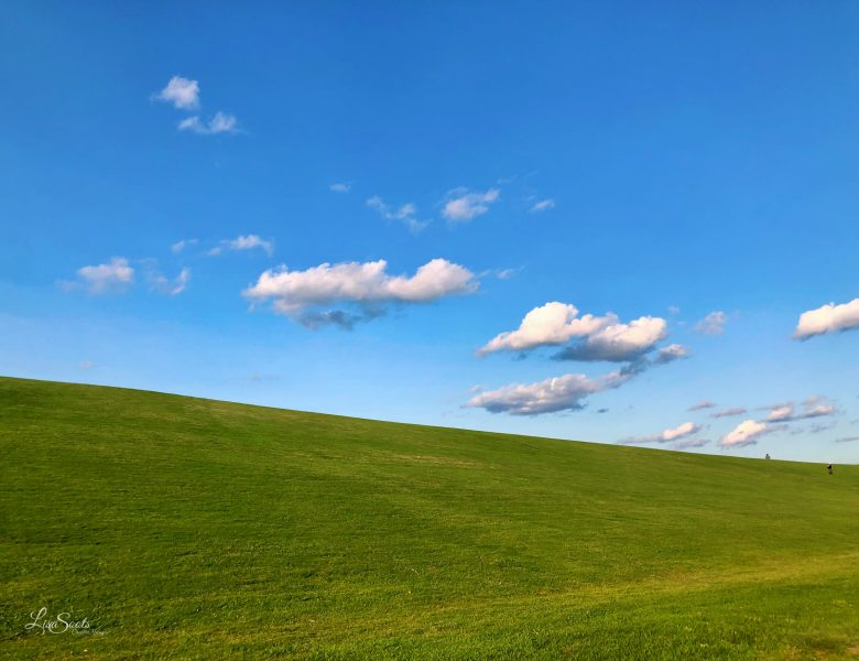 Mount Trashmore Fun- Cool Things to Do  the Whole Family Will Enjoy!
