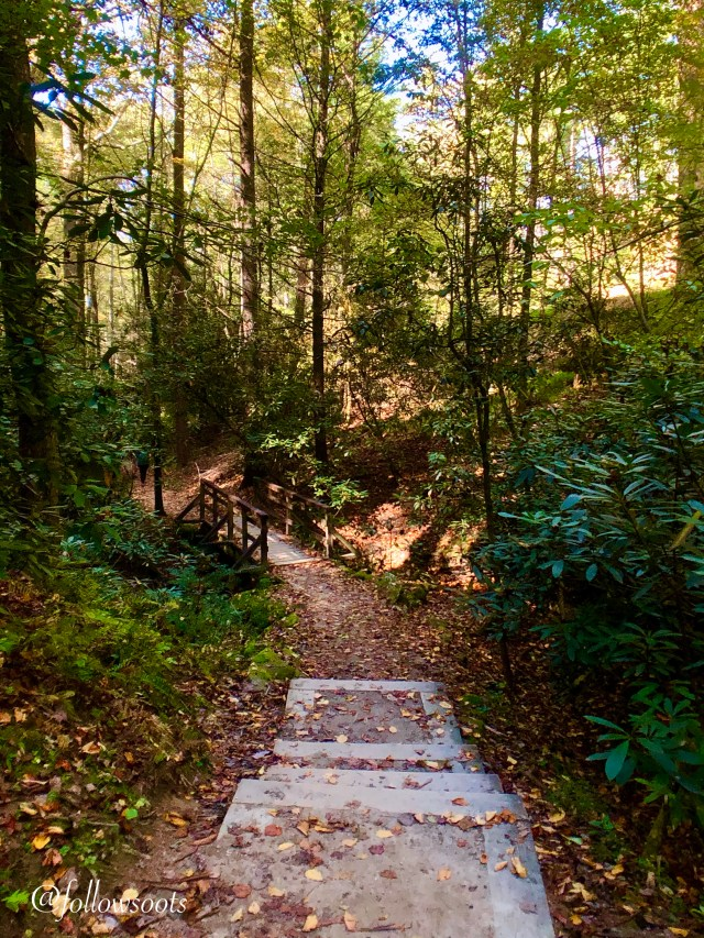 Lovely fall colors on the trails in Stone Mountain State Park