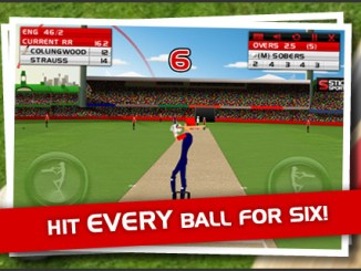 Stick Cricket review