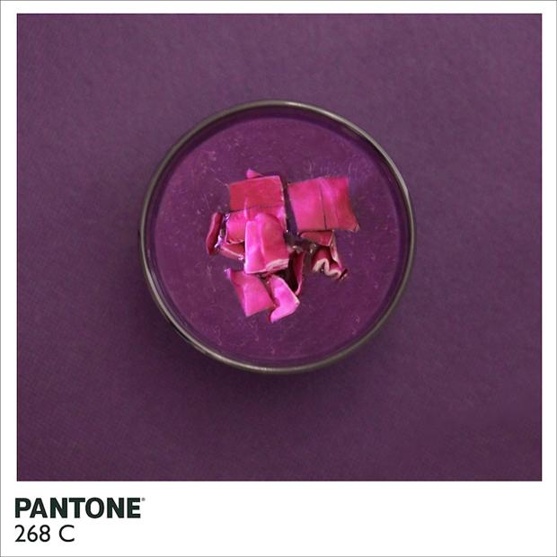 PantoneFood1