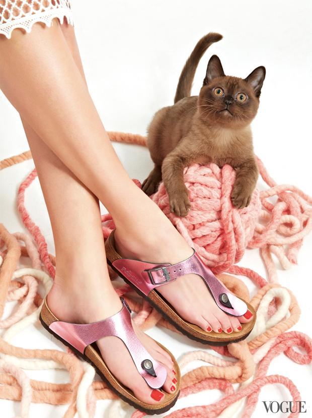 gatinhos-e-sapatos-vogue-22
