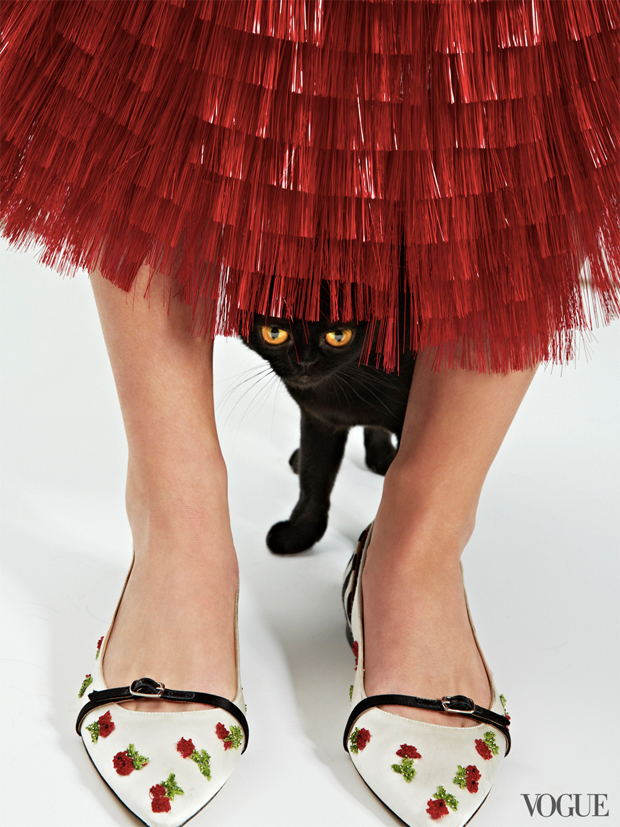 gatinhos-e-sapatos-vogue-30