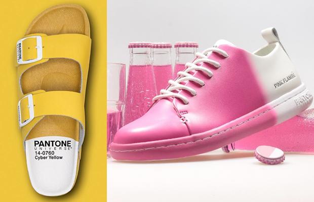 calçados Pantone