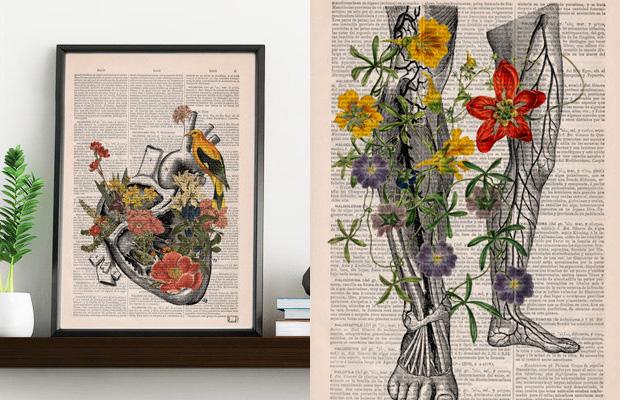 ftc-dicionarios-ilustracoes-florais-prrint-04