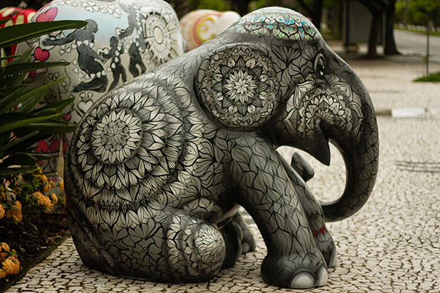 ftc-elephant-parade-foto-mariana-boro-floripa