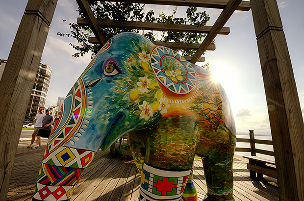 ftc-elephant-parade-foto-andre-damasco