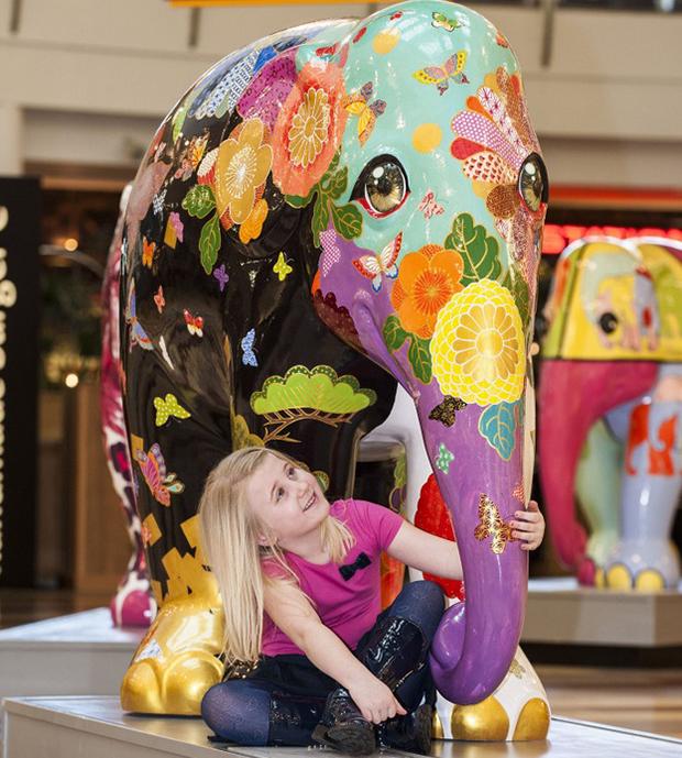 ftc-elephant-parade-menina