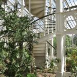 jardins botânicos pelo mundo tour virtual