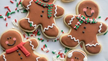 The Best Royal Icing for Decorating Cookies | Follow the Ruels