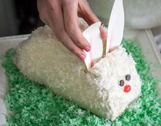 Bunny Cake-13