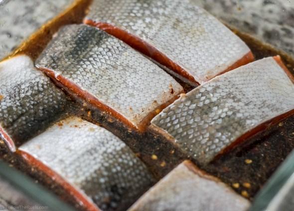 Thia Salmon-1
