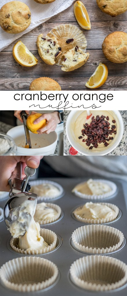 Cranberry Orange Muffins | Follow the Ruels
