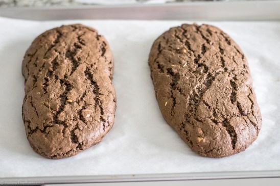 Chocolate Espresso Biscotti-8
