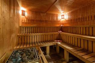 Green Wood Hotel Bansko sauna