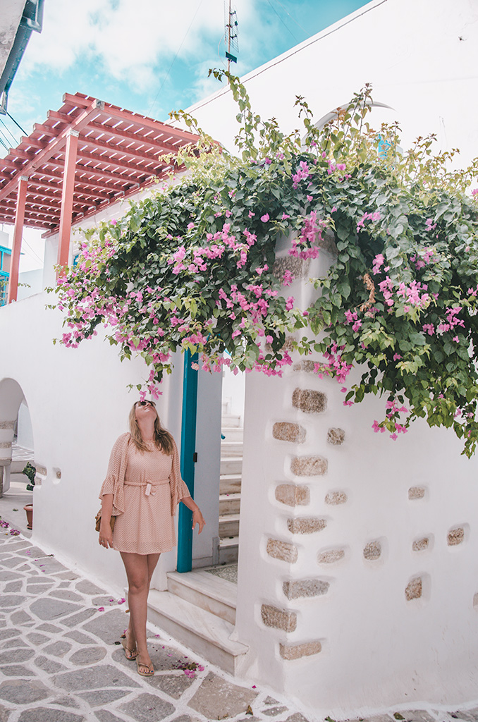 co zobaczyć na Paros - bougenvilla w Parikia