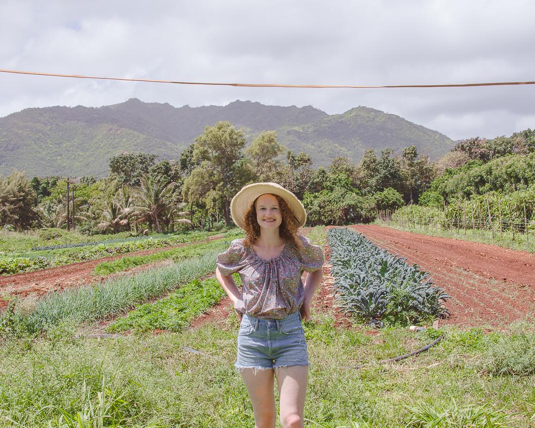 Kauai Organic Farm