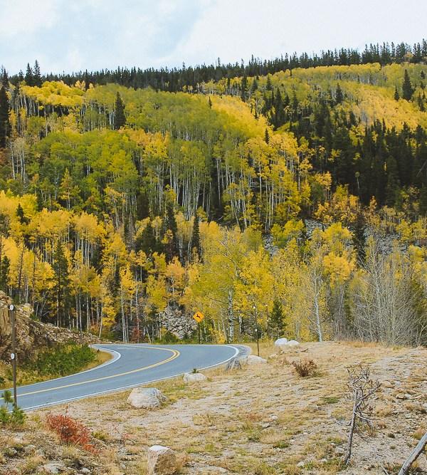 5 Scenic Autumn Drives in Colorado