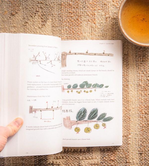 7 Garden Books To Read Now To Help You Grow A Natural Garden