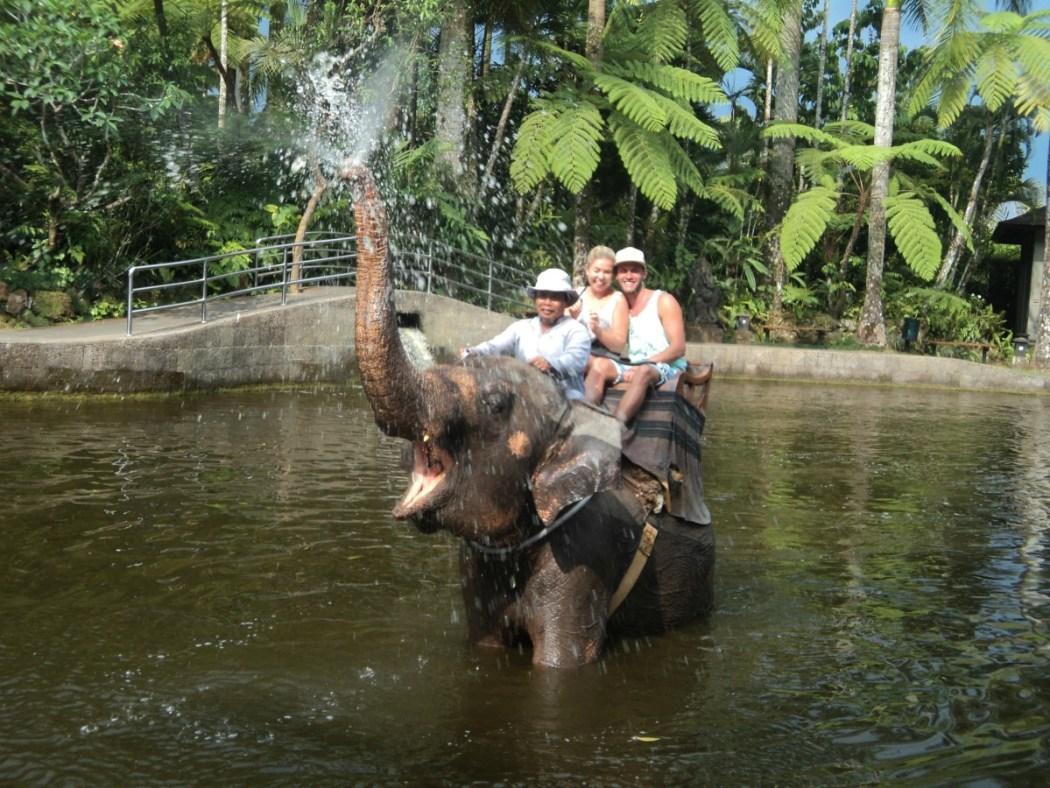 Elefantenpark Bali