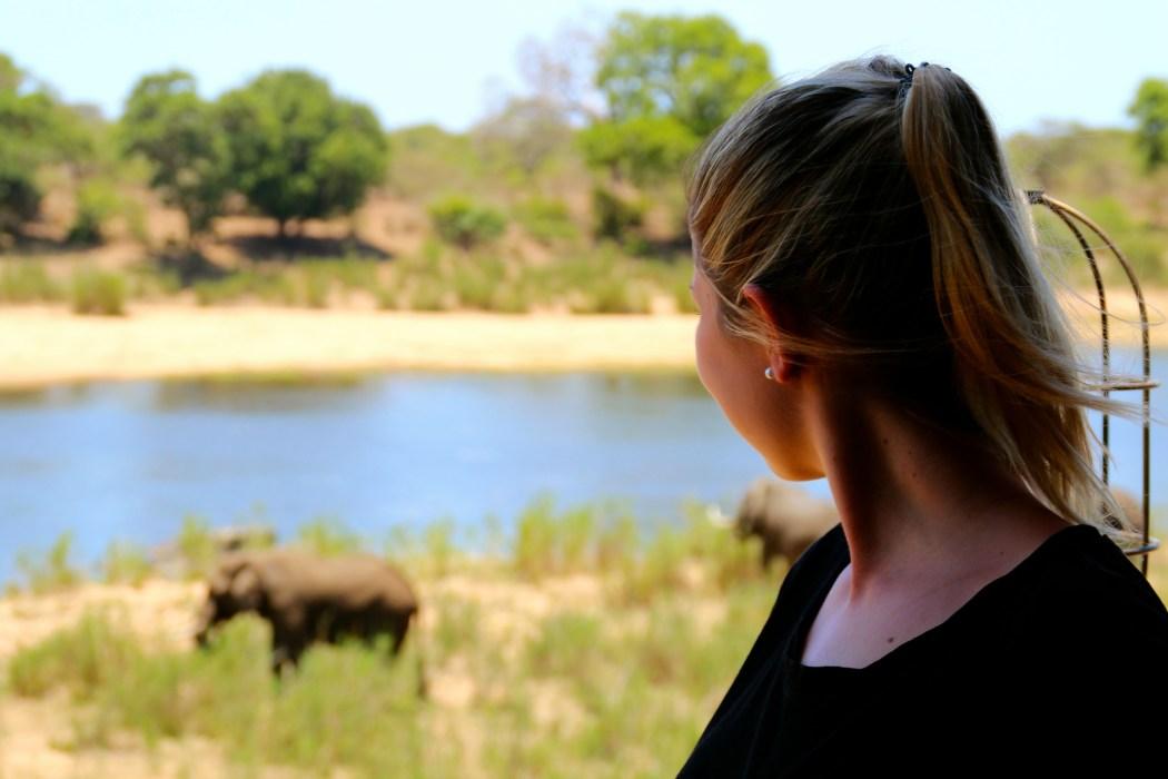 Was du bei Südafrika auf eigene Faust alles beachten musst