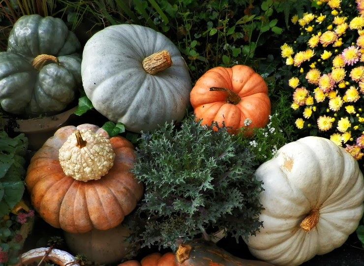 Stunning fall porch decorating fall decorating ideas french country fall decorating with heirloom pumpkins