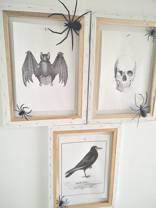 Simple DIY Halloween Decor