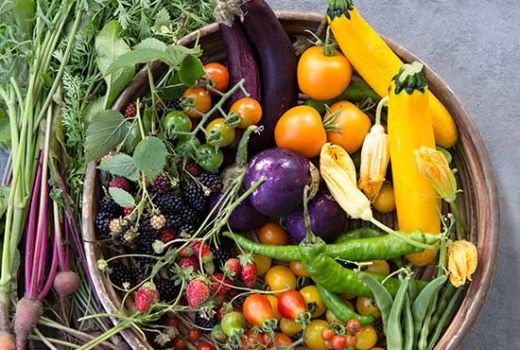 Clean Eating Grow Your Own Organic Food Non-GMO