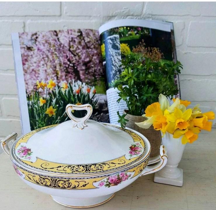 beautiful daffodils vignette spring daffodils