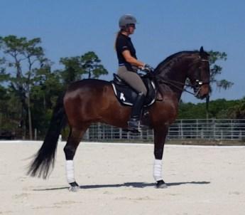 Martha on her horse