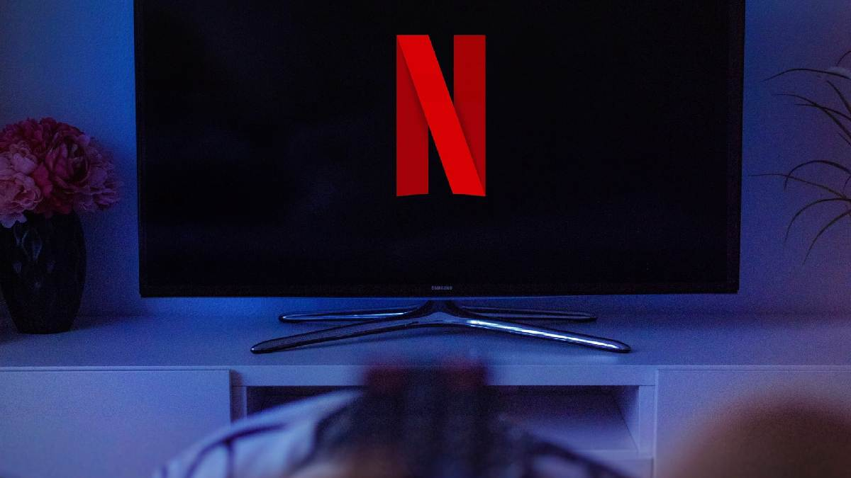 Netflix descarga parcial