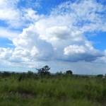 african-skies