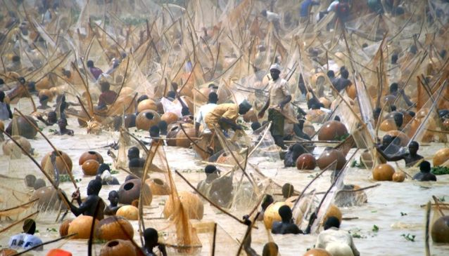 argungu-fishing-festival-is-coming-this-year-140817