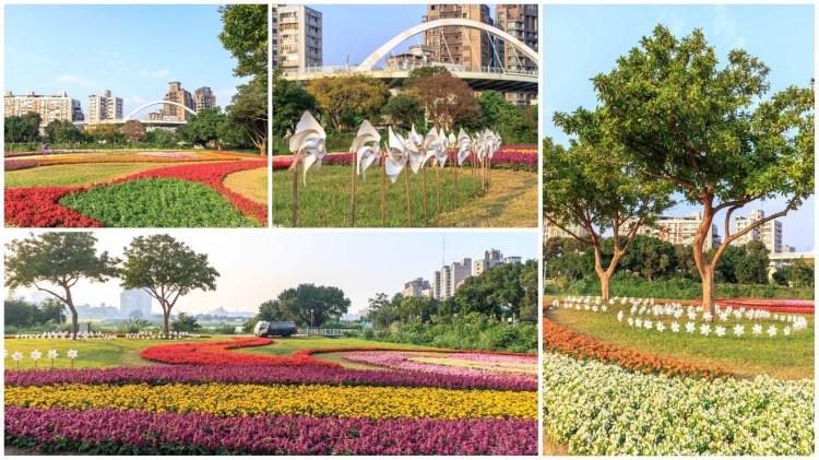 台北中正景點「古亭河濱公園花海綻放」城市中的浪漫花海美景