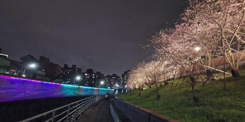 台北內湖景點「2020樂活公園夜櫻季」超浪漫寒櫻盛開/捷運東湖站附近