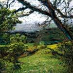 Parco regionale Gessi bolognesi
