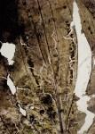 """da """"Herbarium"""""""
