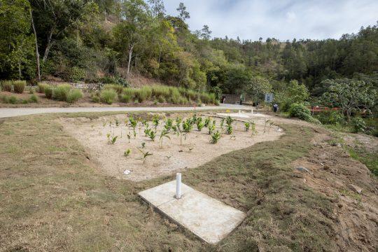 Humedal Aguas Calientes Fondo Agua Yaque 1