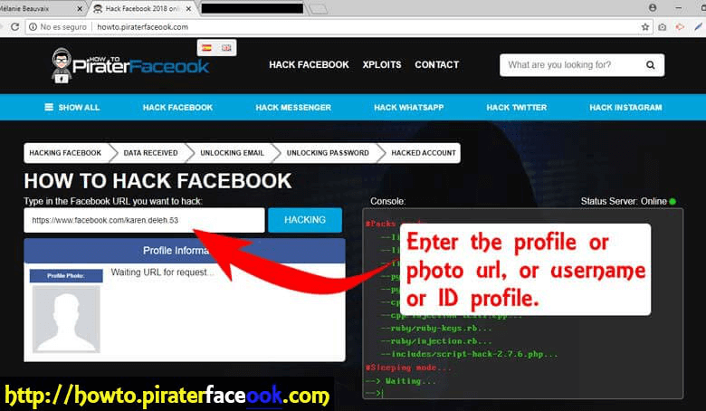 Way 2: PiraterFacebook