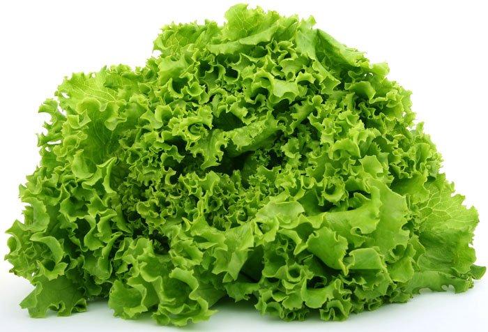 alface beneficios e propriedades - 10 Alimentos que Ajudam a Emagrecer com Qualidade!