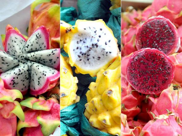 PIATAIA 2 - Pitaia para emagrecer: saiba o que esse fruto exótico faz por você!