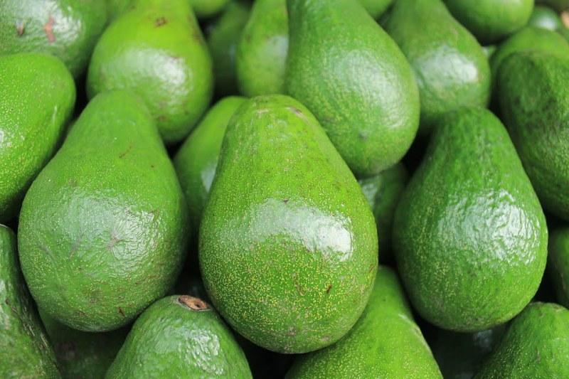 abacate 1 - Frutas Mais Calóricas: Saiba Quais São elas e os Seus Prós e Contras!