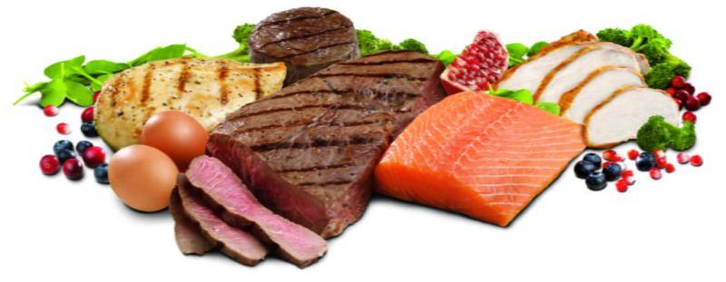 verduras e carnes em um fundo branco 1024x398 - Dieta Dukan: O que é? Funciona? Veja Cardápio Simples e Fácil!