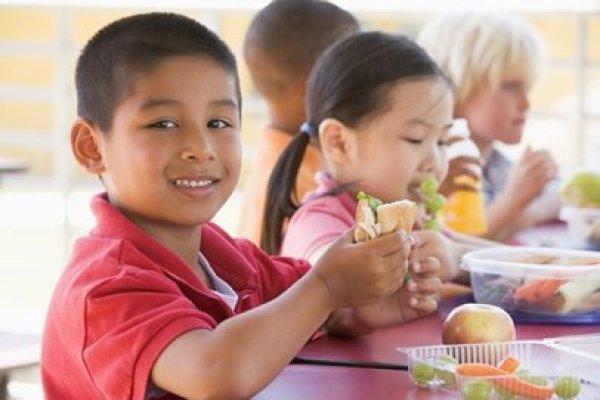 alimentação saudável nas escola 3 - Alimentação saudável na escola: É importante? Como Fazer?