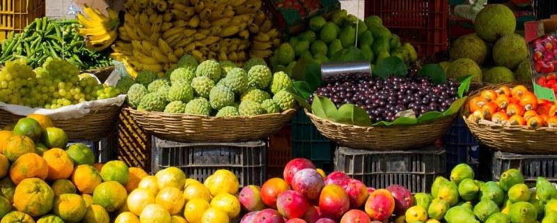 2 15 1024x410 - Como saber quais são as frutas da estação? Veja tabela!